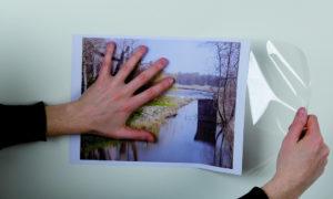 Diferencias entre vinilo de corte y vinilo de impresión
